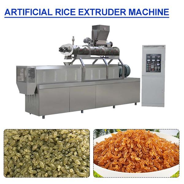 380V Automatic Artificial Rice Extruder Machine With 300-2000kg/h Capacity #1 image