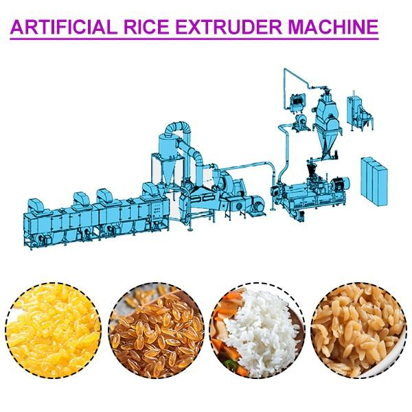 ISO Certification 54Kw Artificial Rice Extruder Machine With Easy Operation #1 image