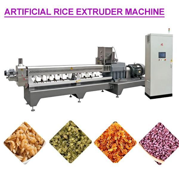 Energy Saving High Degree Automation Artificial Rice Extruder Machine #1 image