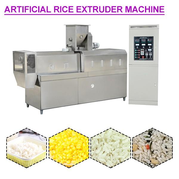 90Kw Stainless Steel Artificial Rice Extruder Machine,Environmental Protection #1 image