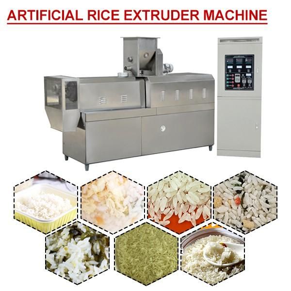 CE Certificate Artificial Rice Making Machine,Rice Extruder Machine #1 image
