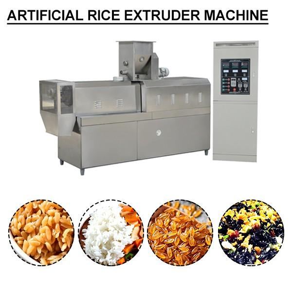 Stailess Steel Rice Extruder Twin-Screw Extruder,Stable Running #1 image