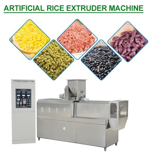 54Kw High Productivity Artificial Rice Extruder Machine,ISO Certification #1 image